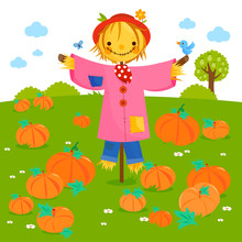 Rural Landscape With Pumpkin Field And A Scarecrow. Vector Illustration