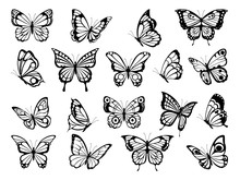 Silhouettes Of Butterflies. Bl...