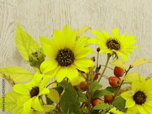 Fotografie, Obraz  Yellow sunflowers on a background of bleached wood closeup.