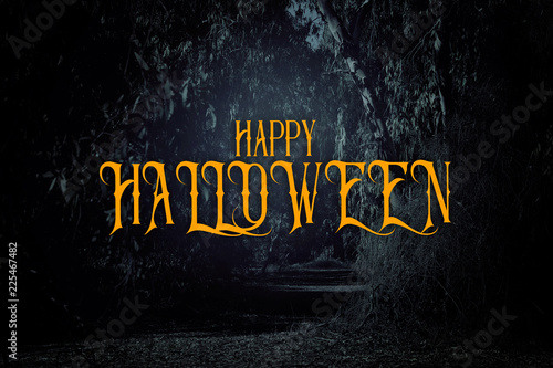 Vászonkép  Halloween mysterious background of dark and haunted forest with text