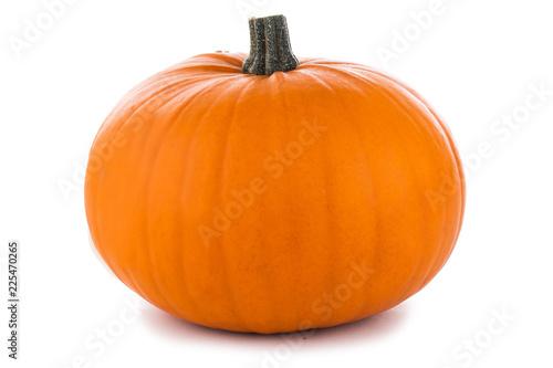 Fotografia  One orange pumpkin
