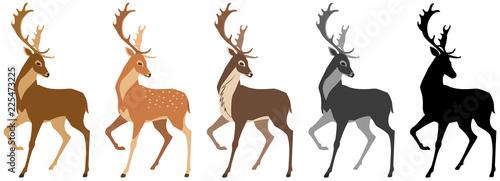 Fototapeta premium zestaw jeleni. Jeleń, jeleń cętkowany, renifer, sylwetka czarno-biała. Pojedyncze obiekty, wietrzna ilustracja.