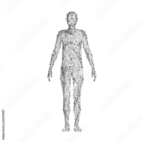 Obraz Human body. Isolated black vector illustration in low-poly style on a white background. The drawing consists of thin lines and dots. Polygonal image on topics of science or medicine. Low poly EPS. - fototapety do salonu