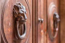Old Wooden Door With Lion Handle. Italy