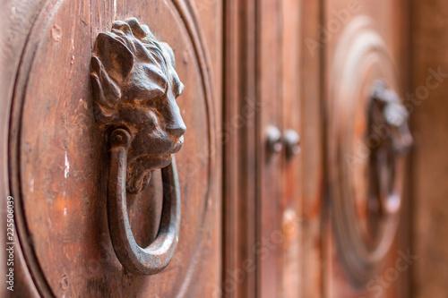 Foto Old wooden Door With Lion Handle. Italy