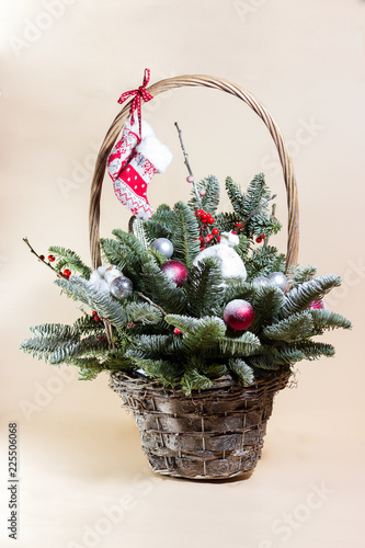 New year bunch with fir and dried flowers