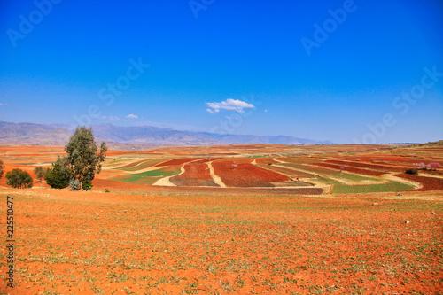 Foto op Canvas Oranje eclat Lesotho malealea mountains landscape