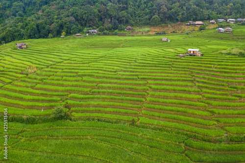 Small house and rice terraces field at pabongpaing village rice terraces Mae-Jam Chiang mai, Thailand