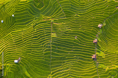 Garden Poster Rice fields Small house and rice terraces field at pabongpaing village rice terraces Mae-Jam Chiang mai, Thailand