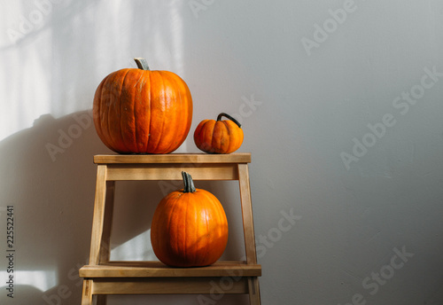 Fotomural  Autumn decoration on white with copy space. Pumpkins