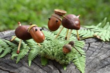 Animal Figurines Made Of Chestnuts And Acorns
