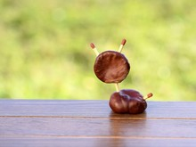 Animal Figurine Made Of Chestnuts