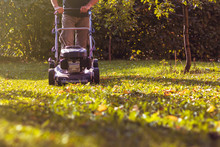 Mowing The Grass With A Lawn M...