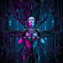 The Quantum Zen Queen / 3D Ill...