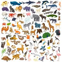 Animals icon set. Cartoon set of animals vector icons for web design