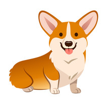 Corgi Dog Vector Cartoon Illustration. Cute Friendly Welsh Corgi Puppy Sitting, Smiling With Tongue Out  Isolated On White. Pets, Animals, Canine Theme Design Element In Contemporary Simple Flat Style