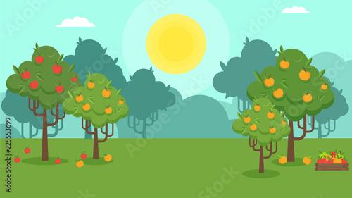 Papel de parede Natural landscape with an apple orchard