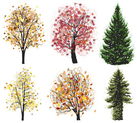 Vector Deciduous and coniferous autumn trees set.