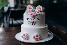 Delicious Cake In The Form Of A Cat On A Child's Birthday