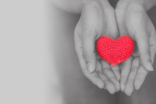Heart In Girl Hand For Giving ...