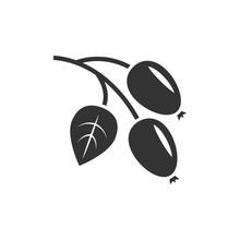Rosehip Icon Black