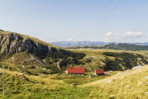 Fotobehang Landschap Beautiful landscape in Montenegro with fresh grass and beautiful peaks. Durmitor National Park in Montenegro.