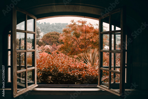 Autumn through an open vintage window