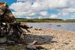 Llyn Brenig beach