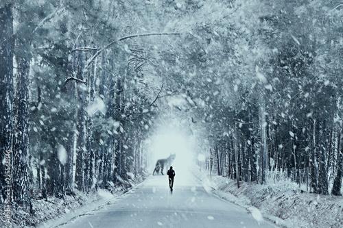 Papiers peints Vieux rose Winter Wolf