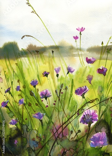 Foto auf AluDibond Aquarelleffekt Inspiration Beautiful watercolor paintings that bring flowers to wages