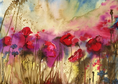 Spoed Foto op Canvas Schilderkunstige Inspiratie Beautiful watercolor paintings that bring flowers to wages, poppies