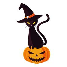 Halloween Black Cat With Pumpkin Character