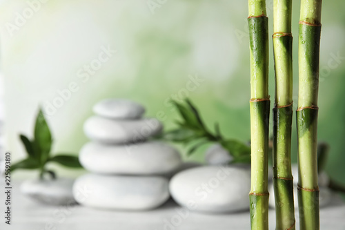 Bamboo branches against blurred spa stones on table. Space for text