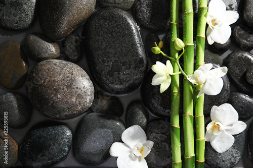 Bamboo branches, flowers and spa stones in water, top view. Space for text