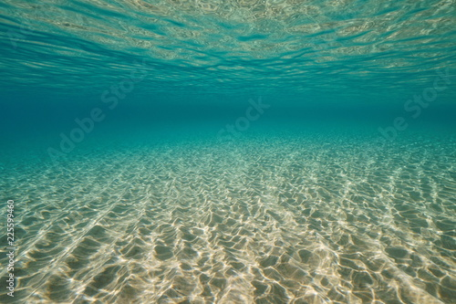 Sandy bottom and water surface underwater in the Mediterranean sea, natural scene, Cabo de Gata-Níjar natural park, Almeria, Andalusia, Spain