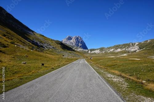 Fototapeta road to campo imperatore