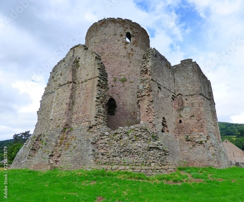 Staande foto Rudnes Ruines de Tretower