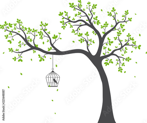 beautiful tree branch with birds silhouette background for wallpaper sticker Fototapete