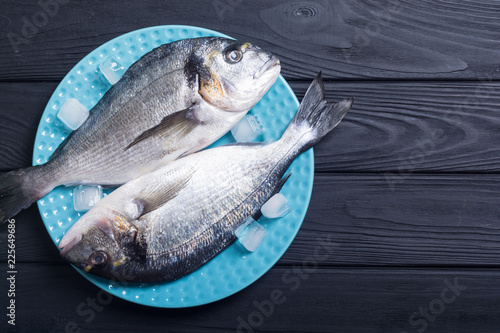 Raw dorado fish in plate with ice