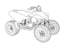 Quad Sketch Vector