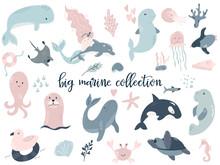 Big Set Of Marine Animals. Perfect For Baby Prints