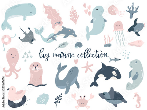 Big set of marine animals. Perfect for baby prints Poster Mural XXL