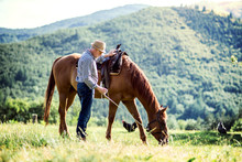 A Senior Man Holding A Horse B...