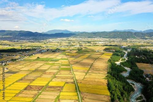 Staande foto Meloen 日本の松川村 田園風景