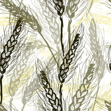 Ink Hand Drawn Wheat Seamless Pattern On White Background