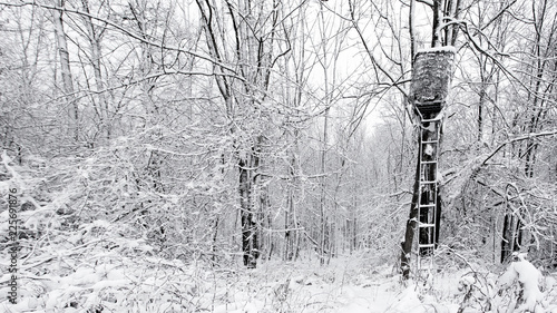 Tree Stand with Camouflage Mesh in the Woods after a Snow Storm