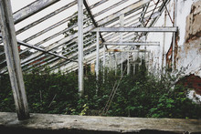 Abandoned Greenhouse With Over...