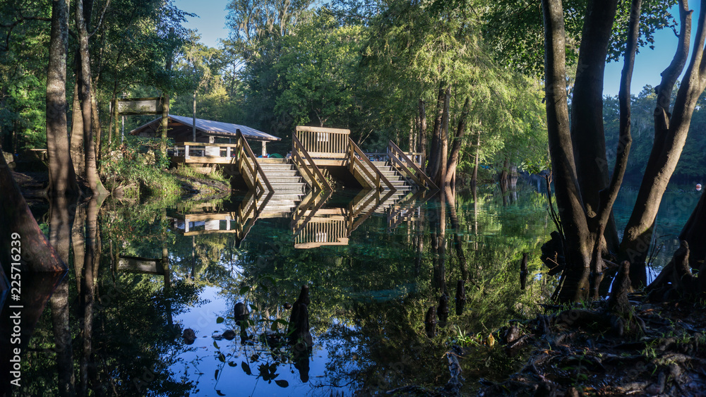 Fototapety, obrazy: Wooden staircase going down in the turquoise water in a lagoon of Ginnie Springs. Cypress forest in Santa Fe river. Left side
