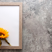 Half Frame With Sunflower On A Concrete Background Vintage Concrete Wall