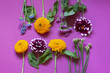 Autumn seasonal flowers flat lay on the purple background. Top view.